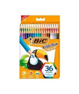 LAPICES DE COLOR BIC EVOLUTION LARGOS - CAJAx36un.- 936406