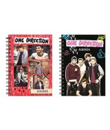 AGENDA PERP.ONE DIRECTION 15x21cm.C/STIKERS-1404138